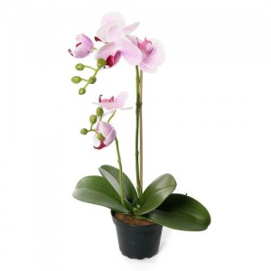 Faux  Orchid in a Pot Pale Pink by Grand Illusions