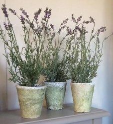 Faux Lavender in a tall Stoneware Pot
